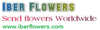 Iberflowers.com